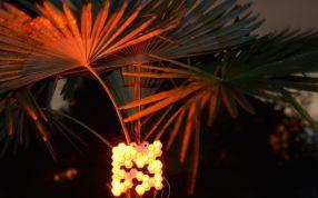 太陽能蜂巢燈