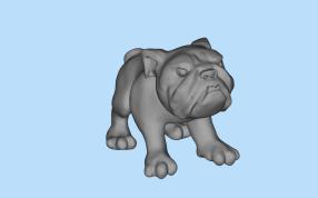 斗牛犬模型